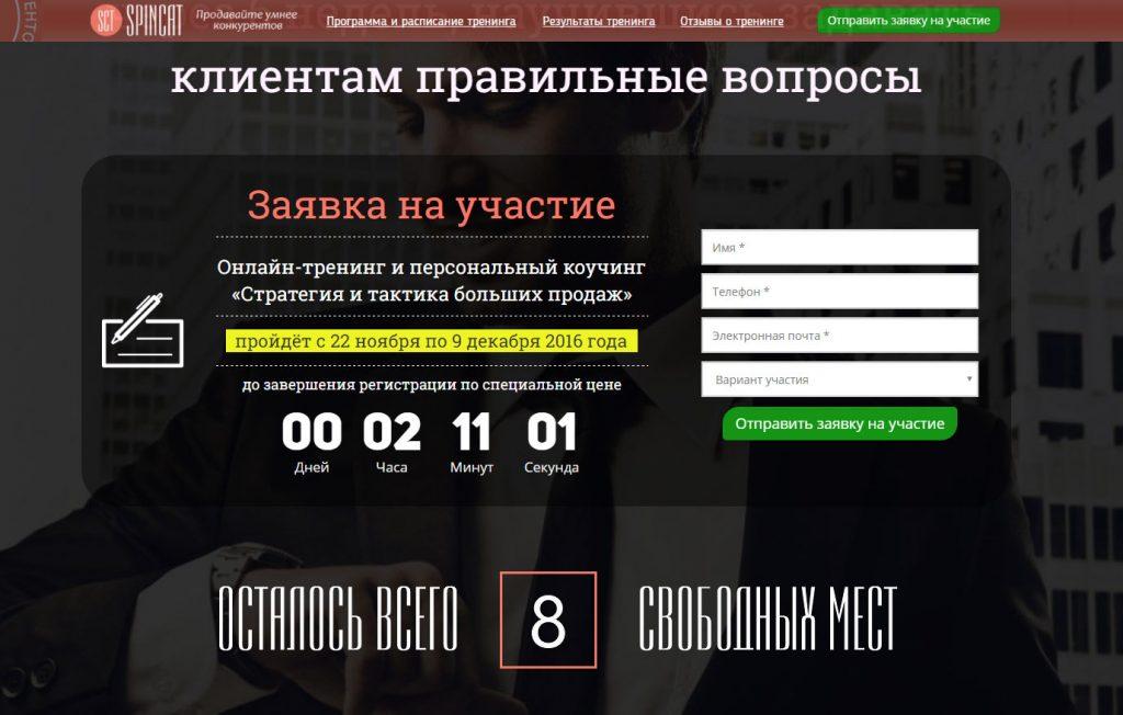 Форма оформления заявки сайта Spincat.ru